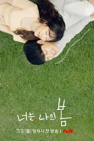 You Are My Spring izle